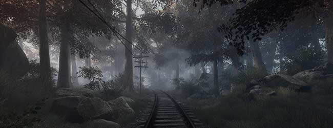 screen The Vanishing of Ethan Carter [cliquer pour agrandir]